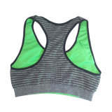 Wholesale Plus Size femmes Seamless Underwire Sports Bra