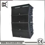 Baie de disques à double ligne de 12 pouces 2000watt scène extérieure de l'équipement sonore