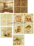 Baldosas cerámicas de la pared con diversos modelos