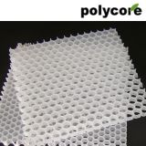 Le polypropylène Honeycomb Core
