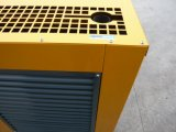 Китайский надежный тепловозный комплект генератора с двигателем Рикардо (10KW к 200KW)