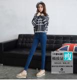 Qualitäts-dünnes Denim-gerade Dame-Jeans