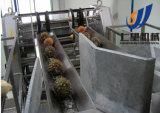 Ligne de /Production de centrale mis en bouteille par jus automatique