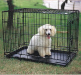 Gabbia, gabbia del cane, gabbia del gatto, gabbia a resina epossidica di serie, gabbia di uccello, gabbia del coniglio, penna di esercitazione