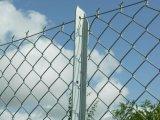 Панели загородки звена цепи оптовой продажи фабрики Anping с гальванизировано