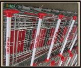 Cadde Supermarkt-Einkaufen-Laufkatze verzinkt mit freier Epoxidbeschichtung Mjy-Sec160