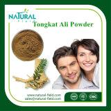 Großhandelsqualität Tongkat Ali Auszug-Pflanzenauszug