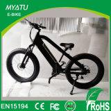 [500و] [-750و] كهربائيّة سمين درّاجة محرّك منتصفة إدارة وحدة دفع [غنغزهوو] [إبيك] مصنع