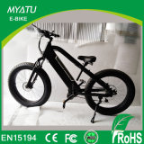 500W -750W 전기 뚱뚱한 자전거 모터 중앙 드라이브 광저우 Ebike 공장