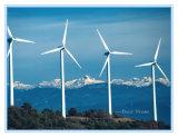 Blocco per grafici di portello della torretta del vento