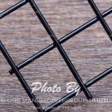 4X4 geschweißter Maschendraht-Zaun