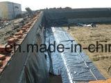De bouw van Film/Anti Lekke Film/PE HDPE Geomembrane/Geomembrane Film
