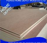Contre-plaqué/contre-plaqué commercial/contre-plaqué courant d'Okoume F/B de pin de contre-plaqué/bouleau