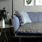 簡単な様式のマイアミ部門別愛シートの革ソファー