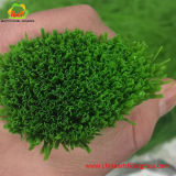 Verschiedene Arten und Farben-künstliches Gras für Fußball und Fußball