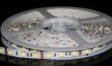 Disque d'éclairage LED pour Showcase
