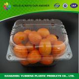 Contenitore a gettare della frutta della copertura superiore di imballaggio per alimenti