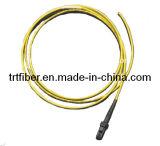 MTRJ Duplex 2 Fibra Cores Fibra Pigtail