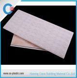 El panel del PVC y techo del PVC