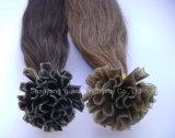 Extensões lisas do cabelo humano da ponta de Remy da queratina/extensões derrubadas lisas do cabelo da fusão