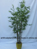 인공적인 대나무 Bonsai 나무
