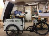 bicicleta eléctrica de la salida 250With350W/Elektrische Bakfiet/cargo expreso Trike/bici del poste E/motor de centro postal del triciclo W Bafang del mensajero, batería bajo el Ce del rectángulo