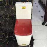 De sanitaire Toiletten van de Slaapkamer van Waren