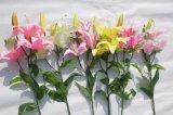 Artifiial de seda florece las flores falsas del lirio para la decoración del hogar de la boda