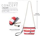 2016の最新の方法粋なデザイナーハンドバッグは卸し売りする袋(BDX-161017)を