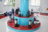 Pompa ad acqua sommergibile verticale delle acque luride di serie di Wq