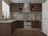 熱い現代ヨーロッパ様式のラッカー無光沢カラー食器棚