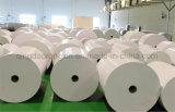 PET 320+18g überzogenes Papier für die Kaffeetasse-Herstellung