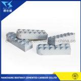Pinza de carburo de tungsteno para la industria de la perforación