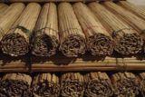 Cerca de bambu laminados