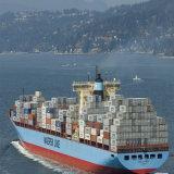 クウェートへの20ftおよび40ft Container Ocean Shipping From上海