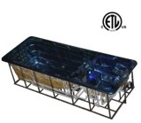 Spuma unica Aquabike Piscine Swimspa del getto