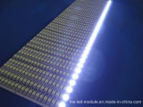 Fabricant SMD 5050 DC 12V LED Strip for Outdoor