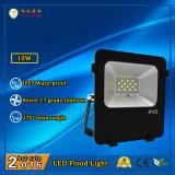3 anni della garanzia 10W LED di illuminazione dell'inondazione per Park&Garden