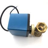 Corpo d'ottone AC220V della valvola di regolazione di scorrimento dell'acqua