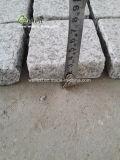 薄い灰色の花こう岩によって炎にあてられる一致させた敷石、シートの玉石