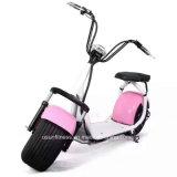セリウムが付いている新しいデザイン1000W電気自転車の電気オートバイの電気スクーター