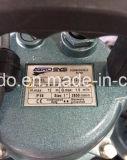 Qdx1.5-12-0.25f de Elektrische Pompen Met duikvermogen van het Water 0.25kw, met de Schakelaar van de Vlotter