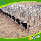 Stalla specifica galvanizzata del TUFFO caldo per il maiale di gestazione