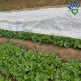17g PP нетканого материала ткань для сельского хозяйства охватывают