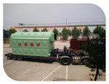 Bois et Coal Fired Package Steam Boiler pour Textile Factory