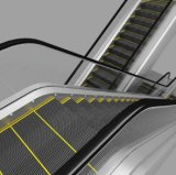 Поставщики эскалатора цены эскалатора фабрики напольные
