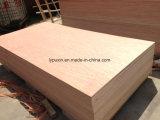 La madera contrachapada, comerciales, Bingtangor 6mm F/B,