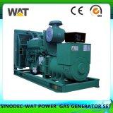 сила двигателя комплекта генератора природного газа 80kw малая