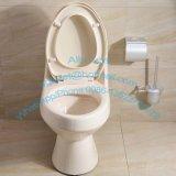 Toilettage Sanitaire Sanitaire Washdown One Piece Toilette / Salle de bain en céramique Wc