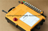 La gru a ponte resistente di modello europea Radio Remote gestisce F21-20d